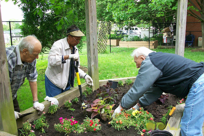 Best Time of Year to Plant Your Garden 1
